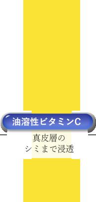 油溶性ビタミンC